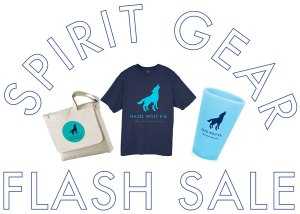 spirit-gear-flash-sale-web